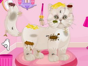 Click to Play Persian Cat Princess Spa Salon
